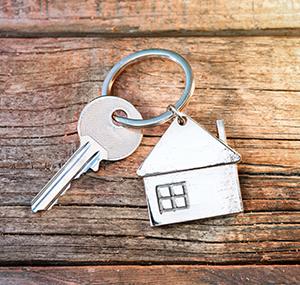 Stock, Property & Assets